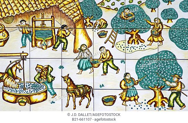 Spain. Malaga.  Painted  ceranic tiles representing the culture of the olives and the traditional way of making olive oil, in the Axarquia mountains
