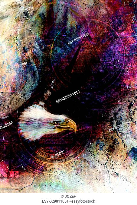 flying eagle beautiful painting illustration, with one dollar collage. texture background