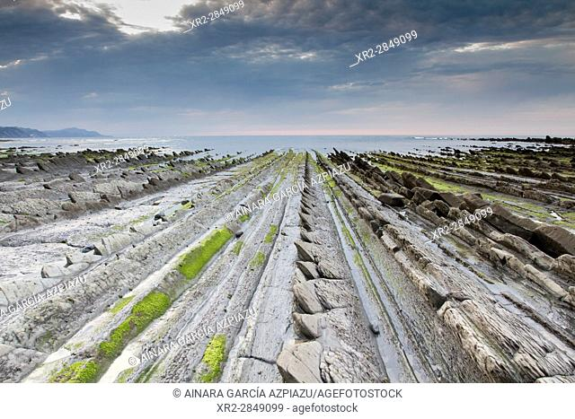 Flysch in Sakoneta beach, Basque Country