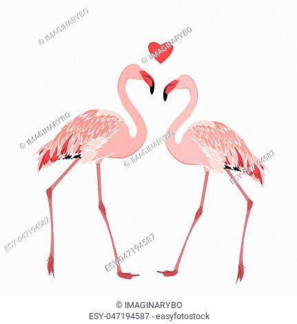 Pink flamingos couple standing beak to beak. Heart shape love feelings symbol element. Exotic tropical wading birds isolated on white background