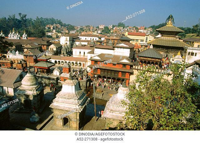 Pashupatinath Temple. Kathmandu. Nepal