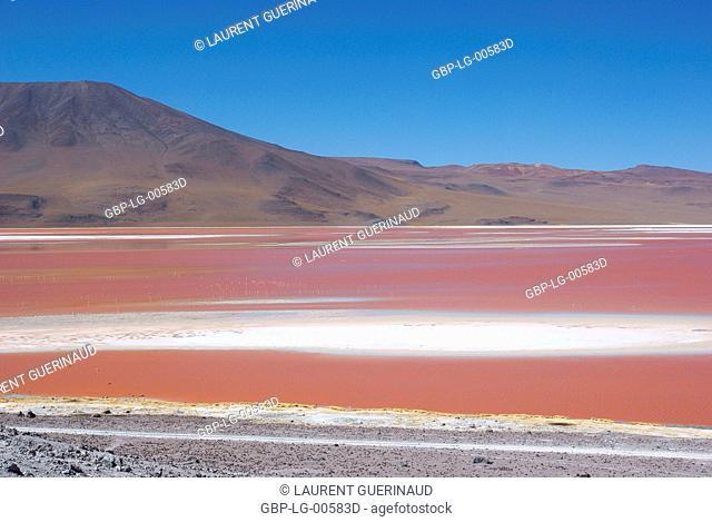 Laguna Colorada, Eduardo Abaroa Reserves National of Andean Fauna, Lipez Desert, Department of Potosi, Sud Lipez Province, La Paz, Bolívia