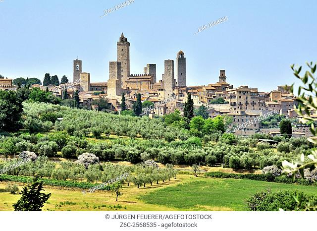 Skyline of San Gimignano, town and tower houses of the Middle Ages, Tuscany, Italy