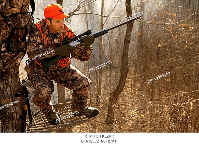 Whitetail Deer Hunter In Tree Stand With Muzzleloader