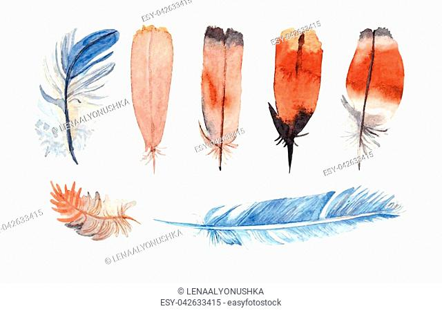 Watercolor feathers collection. Hand painted realistic illustration on paper. Vintage design bird feathers isolated on white background