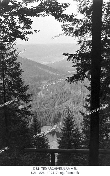 Urlaub im Schwarzwald, Deutsches Reich 1930er Jahre. Holidays in the Black Forest, Germany 1930s