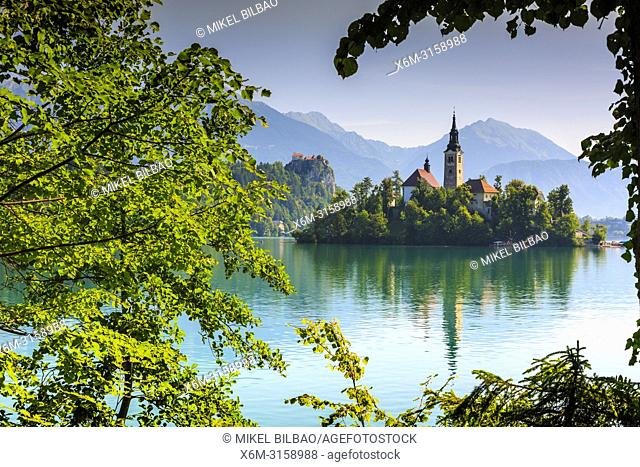 Castle and church. Lake Bled. Julian Alps. Upper Carniola region. Slovenia, Europe