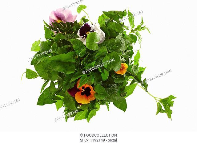Ingredients for wild herb salad