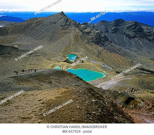 Emerald Lakes, Tongariro Alpine Crossing, Tongariro National Park, North Island, New Zealand, Oceania