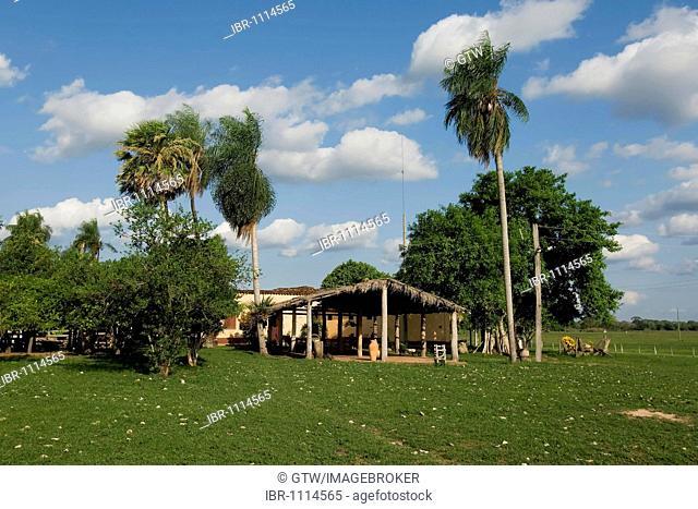 Fazenda Caranda, farm, Pantanal, UNESCO World Heritage Site and Biosphere reserve, Mato Grosso, Brazil