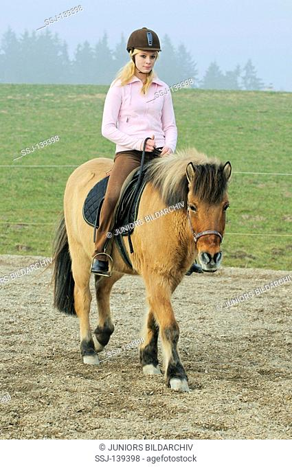girl riding on Icelandic horse