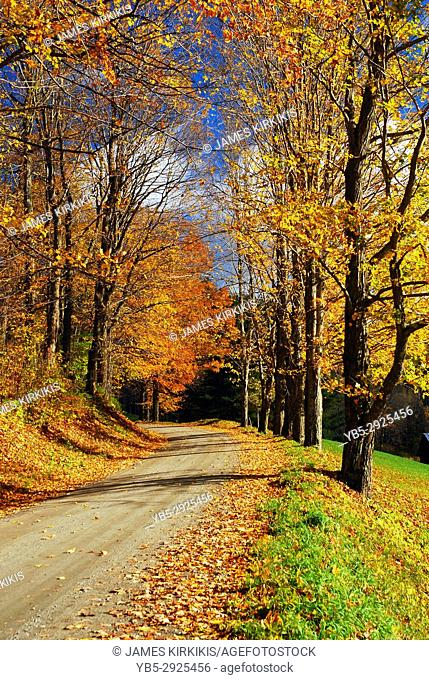 An Country Road winds its way through autumn scenery near Woodstock, Vermont
