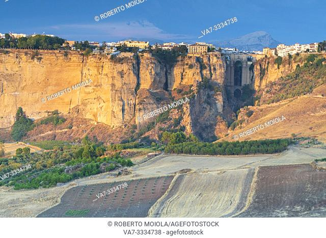 Cultivated fields and olive groves surrounding the old town perched on rocks, Ronda, Malaga province, Andalusia, Spain