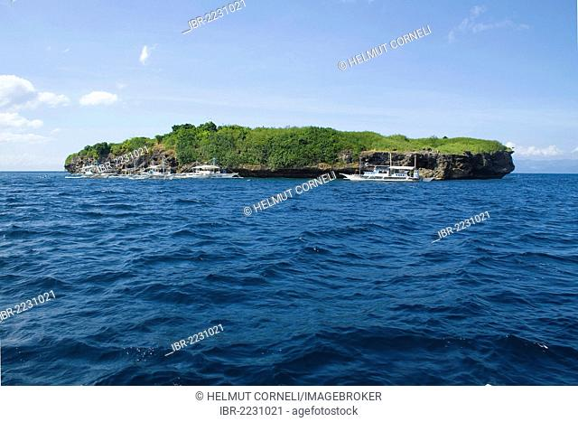 Pescador Island, well-known dive site and marine park, Moalboal, Cebu, Philippines, Indo-Pacific region, Asia