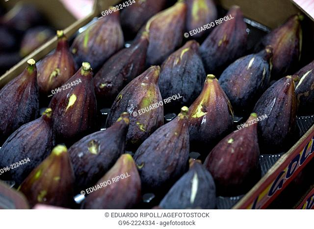 Fig factory in Albatera, Alicante, Spain
