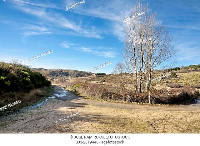 Road to Acenia reservoir in Peguerinos. Avila. Castilla Leon. Spain. Europe