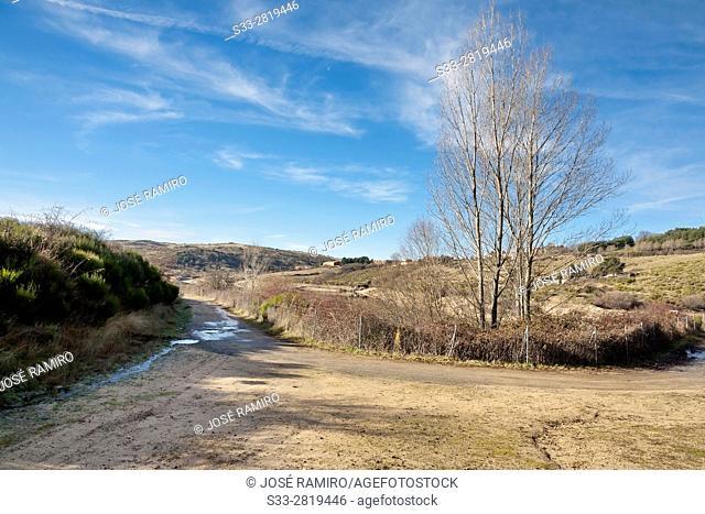 Road to Acenia reservoir in Peguerinos. Avila. Castilla Leon. Spain. Europe