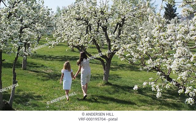 mother and daughter walking through a flowering orchard