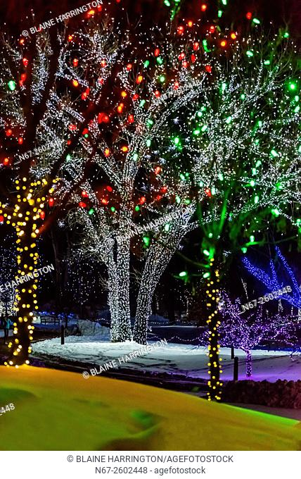 A Hudson Christmas (holiday light show at Hudson Gardens), Littleton, Colorado USA