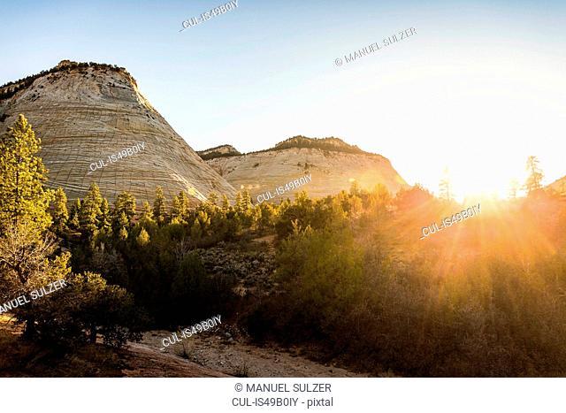 Checkerboard Mesa, Zion National Park, Springdale, Utah, USA