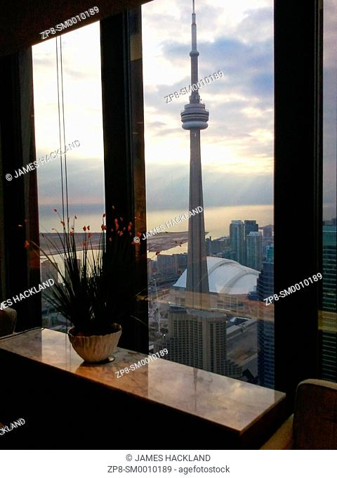 A plant sitting on top of a marble table overlooking the city of Toronto with the CN Tower clearly visible. Toronto, Ontario, Canada