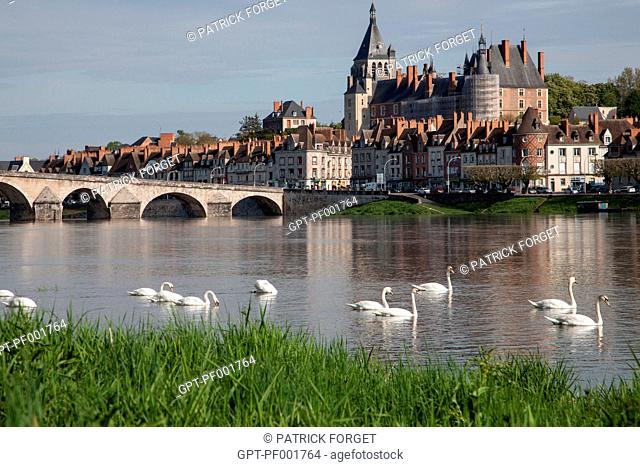 GROUP OF SWANS ON THE LOIRE, THE STONE BRIDGE, TOWN AND CHATEAU, GIEN, LOIRET 45, FRANCE