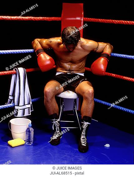Portrait of a boxer resting in the corner of the ring