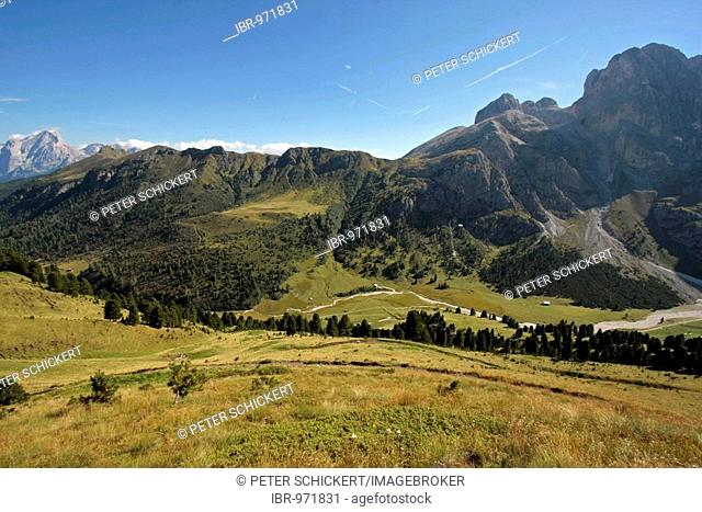 Alpine pasture Seiser Alm, Alpe di Siusi, in the Dolomites in summer, near Seis, Sciliar mountain, South Tyrol, Italy, Europe