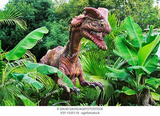 Dilophosaurus which means 'double-crested reptile' dinosaur from the early Jurassic period  Goes to a length of 20 feet and weighted upto 1 ton  Was a meat...