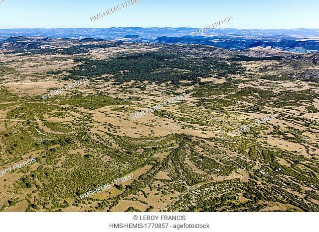 France, Aveyron, Parc Naturel Regional des Grands Causses (Natural Regional Park of Grands Causses), Viala du Pas de Jaux, the Larzac plateau (aerial view)