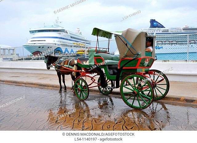 Carriage rides near Caribbean Cruise Ship Cozumel Mexico