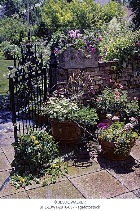 PATIOS: Detail of area in front of an old iron gate with lots of potted flowers, Geraniums, petunias, grasses, Daises, etc