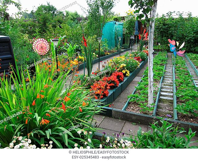 Flowers and vegetables in garden