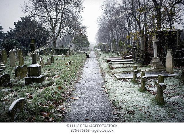 Bromton cemetery in London. England, UK