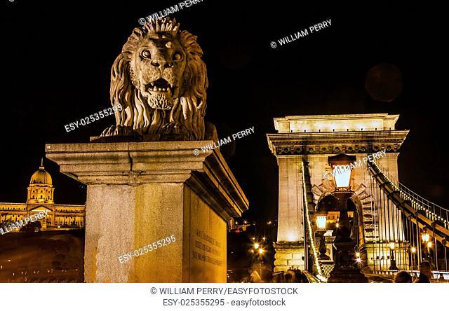 Chain Bridge Lion Budapest Hungary