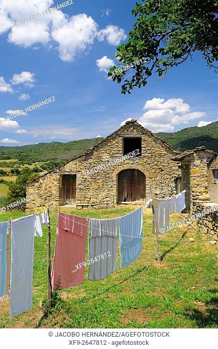 Bernués.Huesca province.Aragón.Spain
