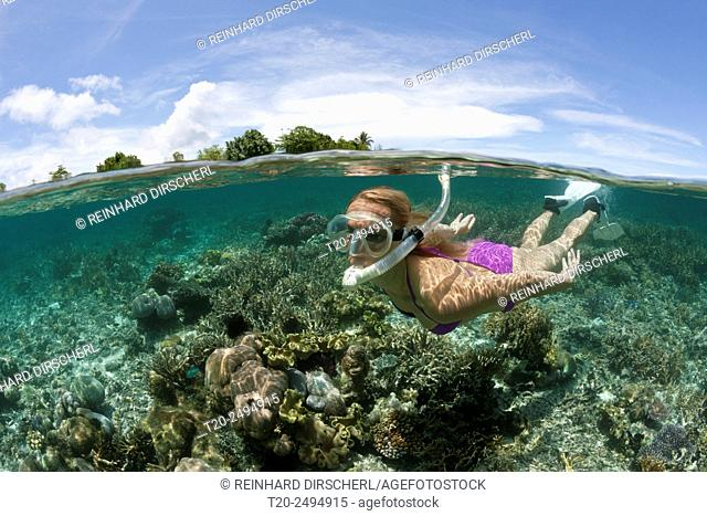 Snorkeling at Solomon Islands, Florida Islands, Solomon Islands