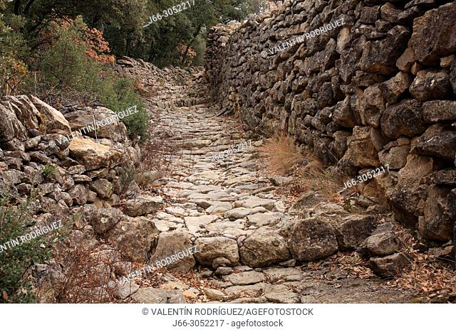 Stone path in the route from Mas Nou to Cinctorres. Castellón