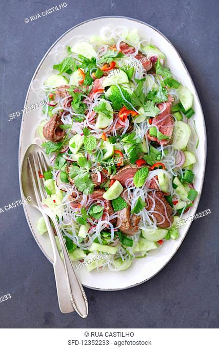 Thai salad with beef tenderloin, cucumber and glass noodles