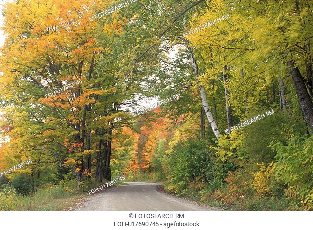 fall, country road, foliage, Sheffield, VT, Vermont, Colorful fall foliage along a country road in the autumn
