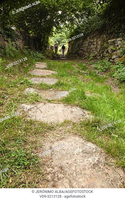 Path to walk in nature. Roman road of Bárcena de Pie de Concha. Cantabria, Northern Spain, Europe