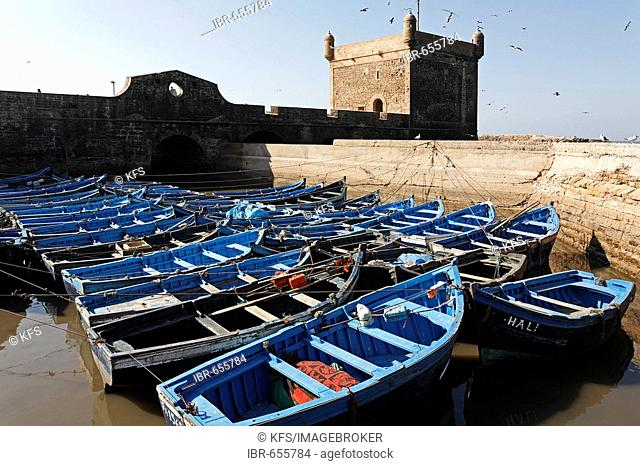 Blue fishing boats in front of Scala du Port Fortress, Essaouira, Morocco, Africa