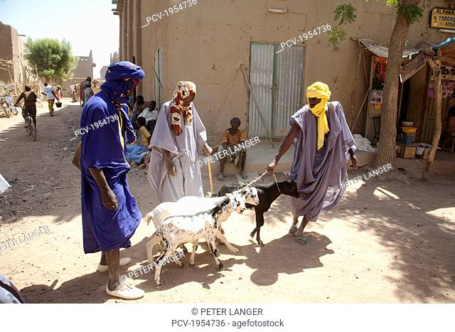 Livestock for sale at Monday Market in Djenne, Mali