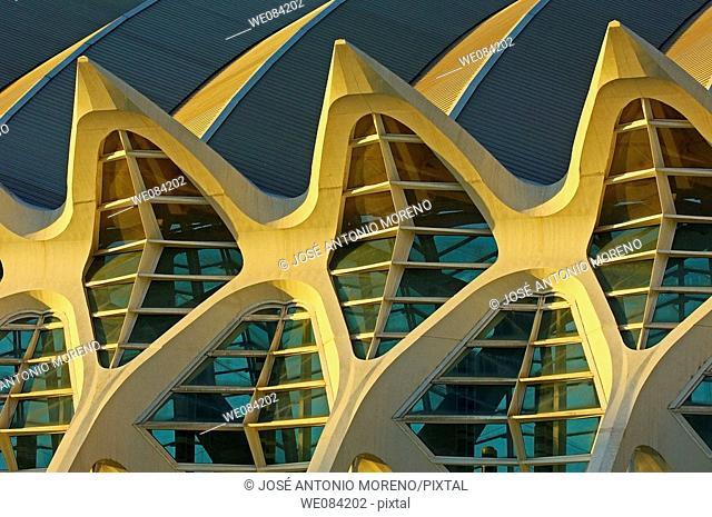 Prince Felipe Museum of Sciences, City of Arts and Sciences by S. Calatrava, Valencia. Comunidad Valenciana, Spain