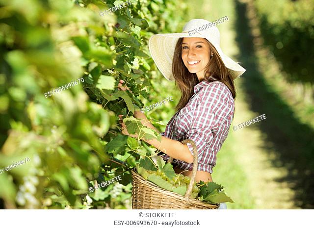 Young peasant woman in the vineyard