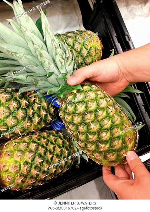 A man picks out a pineapple at a grocery store in Washington State, USA