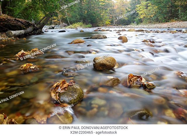 Gale River in Franconia, New Hampshire USA during the autumn month