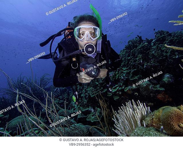 Caribbean Sea Los Roques, woman Scuba-Diver underwater photographer Tour, Underwater, Venezuela