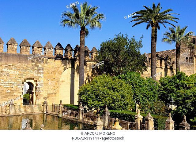 Garden of Alcazar de los Reyes Cristianos, Cordoba, Andalusia, Spain / Alcazar of the Christian Monarchs