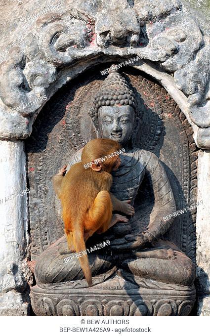 Nepal, Kathmandu, Swayambhunath stupa, Monkey Temple